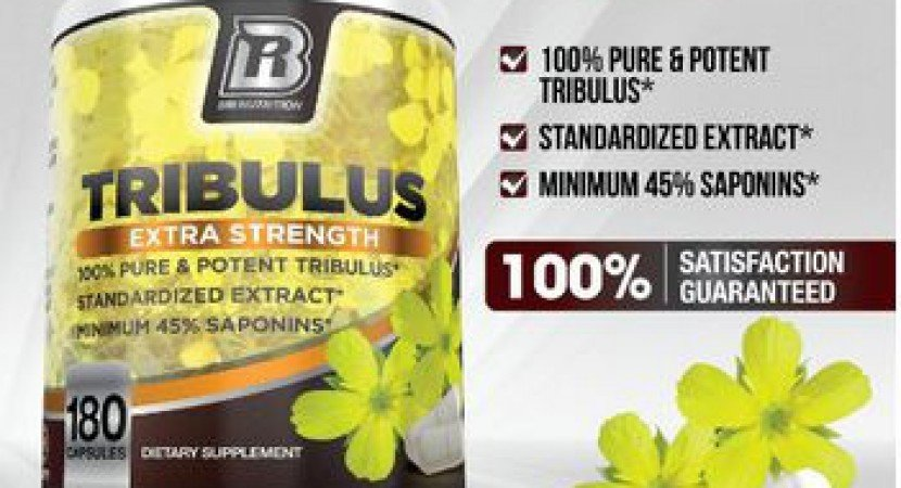 Tribulus terrestris review
