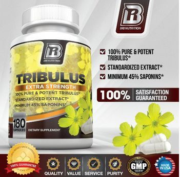 Tribulus terrestris review