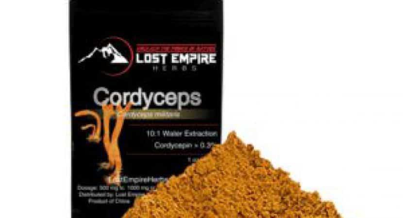 Best Cordyceps Supplement