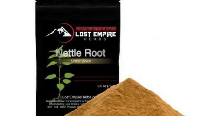 Best Nettle Root Extract