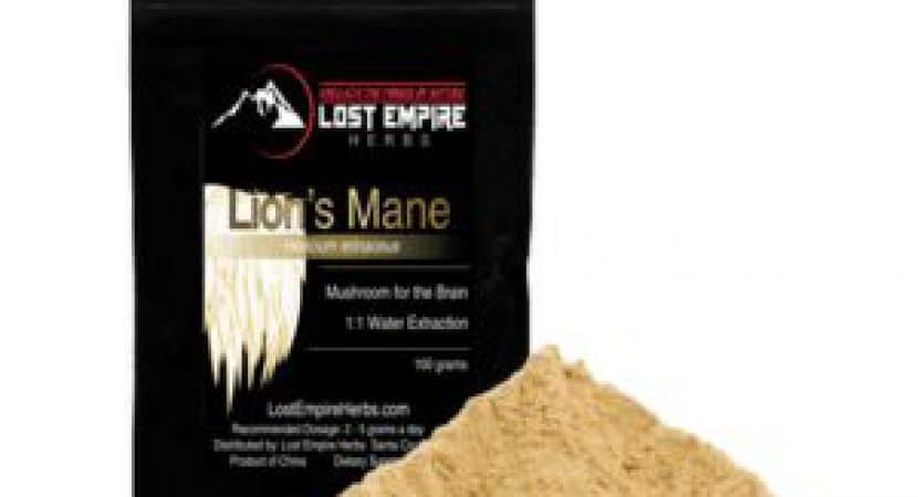 Lion's Mane Review
