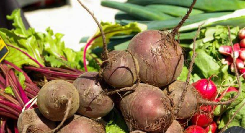 beet root powder dosage