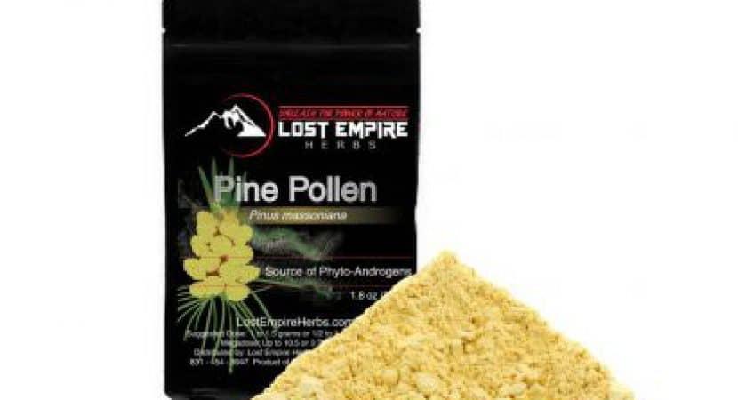 where to buy pine pollen