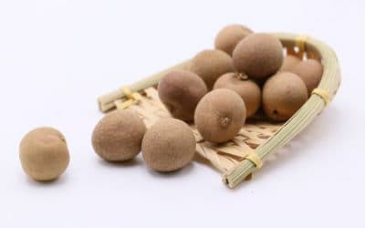 Buy Longan Berry