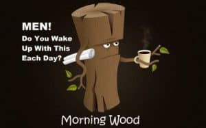 Morning Wood Meaning