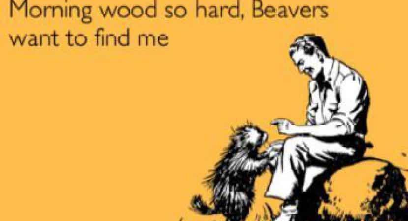 Get Morning Wood Back