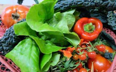Vegetables For Type 2 Diabetes